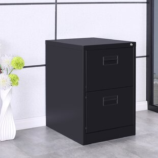 Willilams 2-Drawer Mobile Vertical Filing Cabinet by Symple Stuff Best