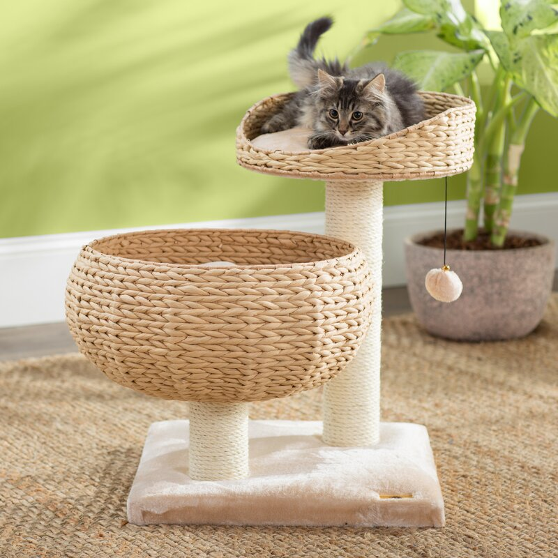 Archie Oscar 23 Deborah Cat Tree Reviews Wayfair