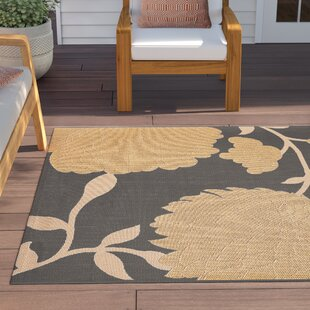 Larson Anthracite / Beige and Green Indoor/Outdoor Area Rug