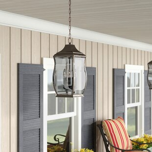 El Paso 3-Light Outdoor Hanging Lantern by Darby Home Co