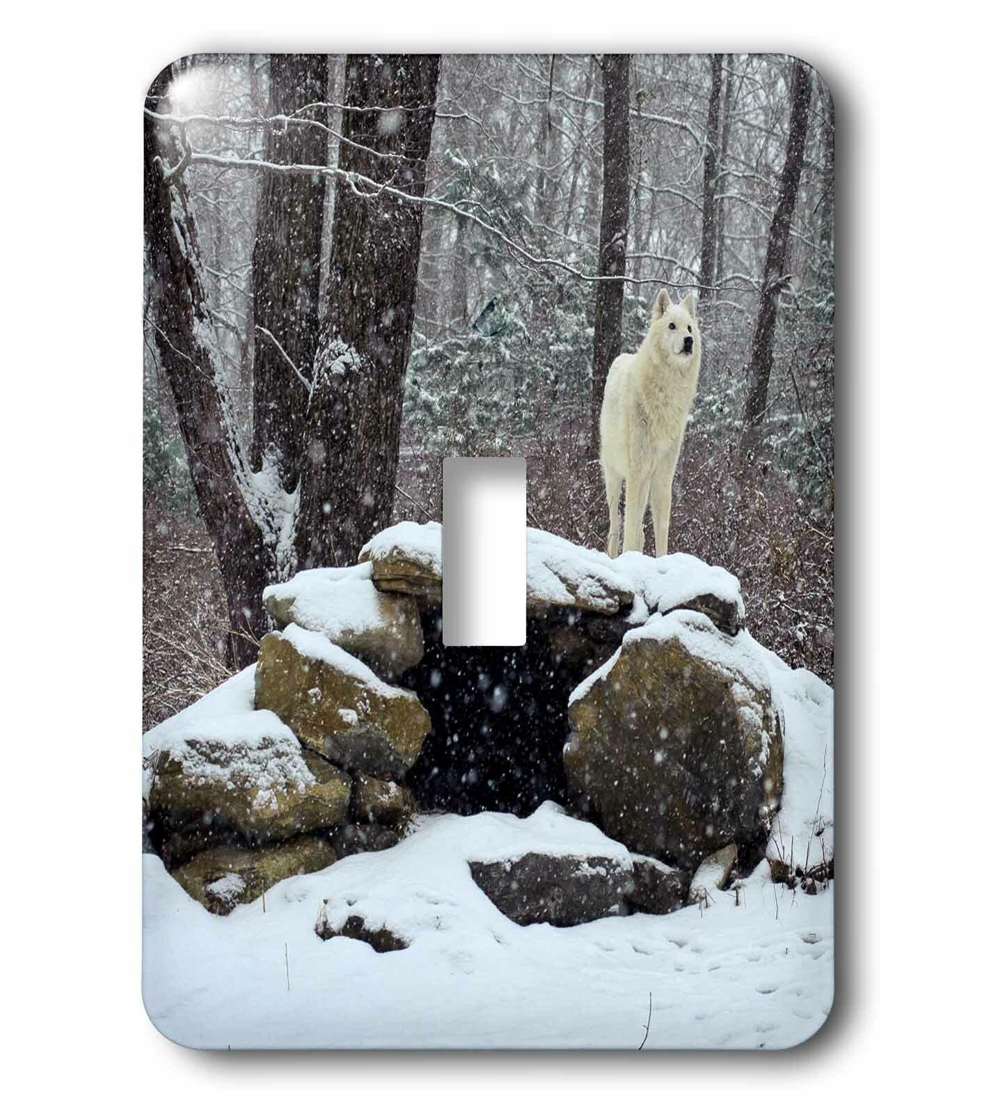 3drose Arctic Wolf 2 1 Gang Toggle Light Switch Wall Plate Wayfair