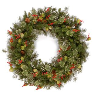 Wintry Berry Holly Leaf And Pine 61cm Wreath By The Seasonal Aisle