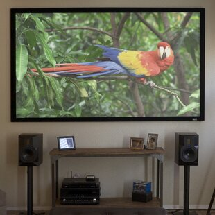 ezFrame Gray Fixed Frame Projection Screen by Elite Screens