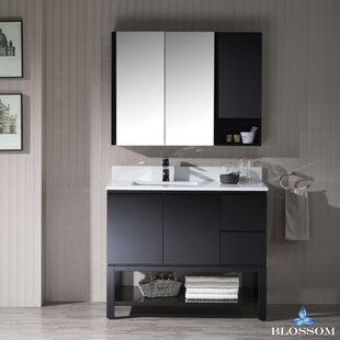 Top Reviews Maly Contemporary 42 Single Bathroom Vanity Set By Orren Ellis