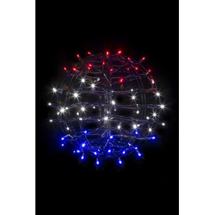 The Holiday Aisle Fold Flat Sphere Net Lights with 75 LED Lights