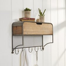 Parnwell Hook Rack with Storage Shelf
