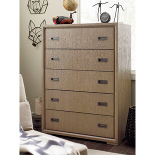 Inexpensive Hudson 5 Drawer Standard Dresser by Rachael Ray Home Reviews (2019) & Buyer's Guide