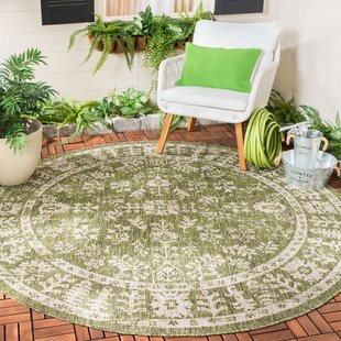 Haddad Green Indoor/Outdoor Area Rug