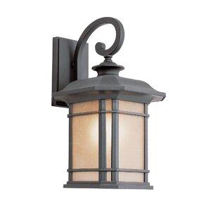 Newbury 1-Light Outdoor Wall Lantern by Loon Peak