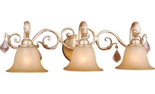 Price Check Prosser 3-Light Vanity Light By Astoria Grand