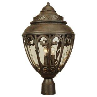 Purchase Oakhill 3-Light Outdoor Lantern Head By Charlton Home