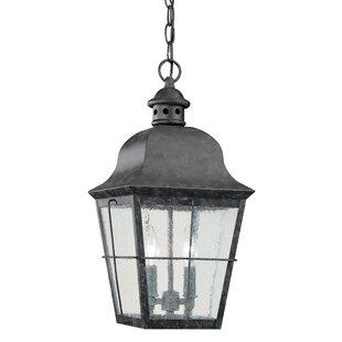 Loon Peak Chancellroy 2-Light Outdoor Pendant
