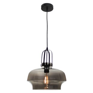 EQLight NY Industrial 1-Light Novelty Pendant