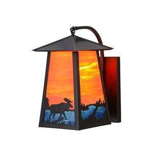 1-Light Outdoor Wall Lantern by Meyda Tif..