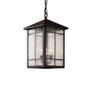 Outdoor Hanging Lights You\'ll Love | Wayfair
