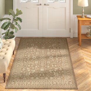 Kivett Brown Indoor/Outdoor Area Rug