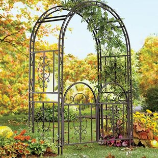 Devore Iron Garden Arched By Sol 72 Outdoor