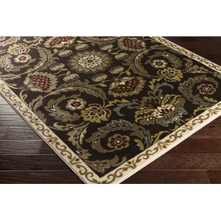 Top Dunnigan Brown Area Rug ByCharlton Home