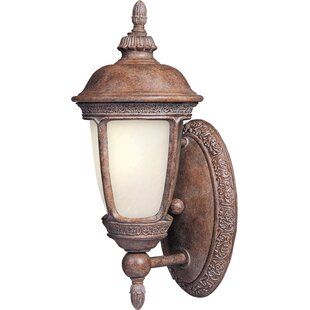 Darby Home Co Spinnaker 1-Light Outdoor Sconce