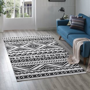 Shaun Geometric Moroccan Tribal Black White Area Rug