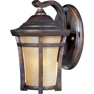 Saranac 1-Light Outdoor Wall Lantern by Darby Home Co