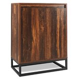 Ricarda 2 Door Accent Cabinet by Millwood Pines