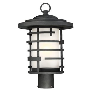 Ivy Bronx Neven 1-Light Lantern Head