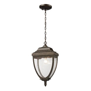 Affordable Price Cockermouth 1-Light Outdoor Pendant By Charlton Home