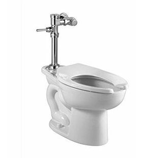 American Standard Madera EverClean 1.6 GPF Elongated One-Piece Toilet