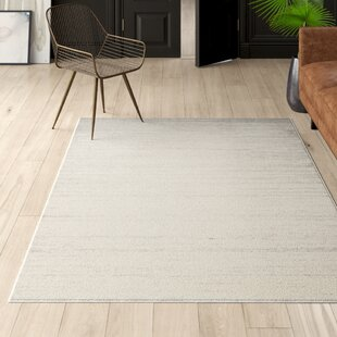 Best reviews Mcguire Ivory/Silver Area Rug Mercury Row