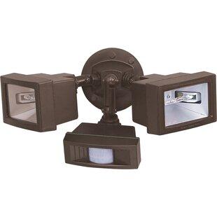 Latitude Run Terrones Contemporary 2-Light Outdoor Floodlight