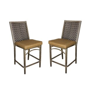Ferebee Bar Stool (Set of 2) Red Barrel Studio