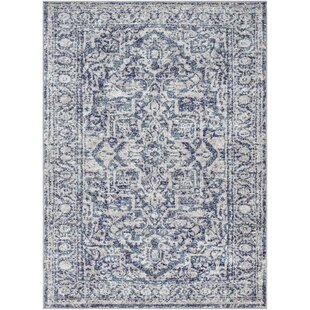 Ranck Distressed Navy Baby Blue Area Rug