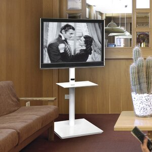 Carranza TV Stand for TVs up to 60""