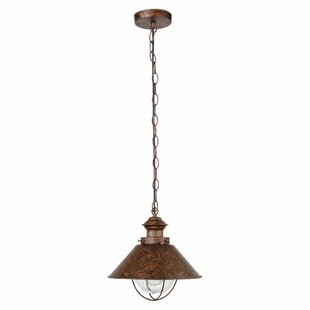 Holyoke 1 Light Outdoor Pendant By Borough Wharf