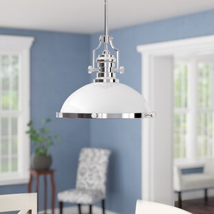Roa 1-Light Dome Pendant