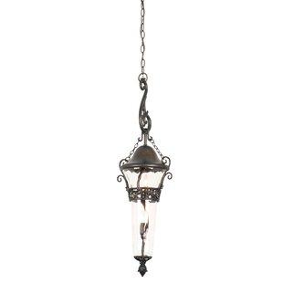 Kalco Anastasia 2-Light Outdoor Pendant