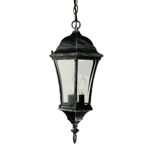 TransGlobe Lighting 3-Light Outdoor Hanging Lantern
