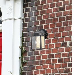 Breakwater Bay Nerstrand 1-Light Outdoor Wall Lantern