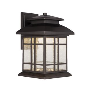 Charlton Home Krish 1-Light Outdoor Wall Lantern