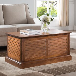 Styer Coffee Table with Storage by Bay Isle Home