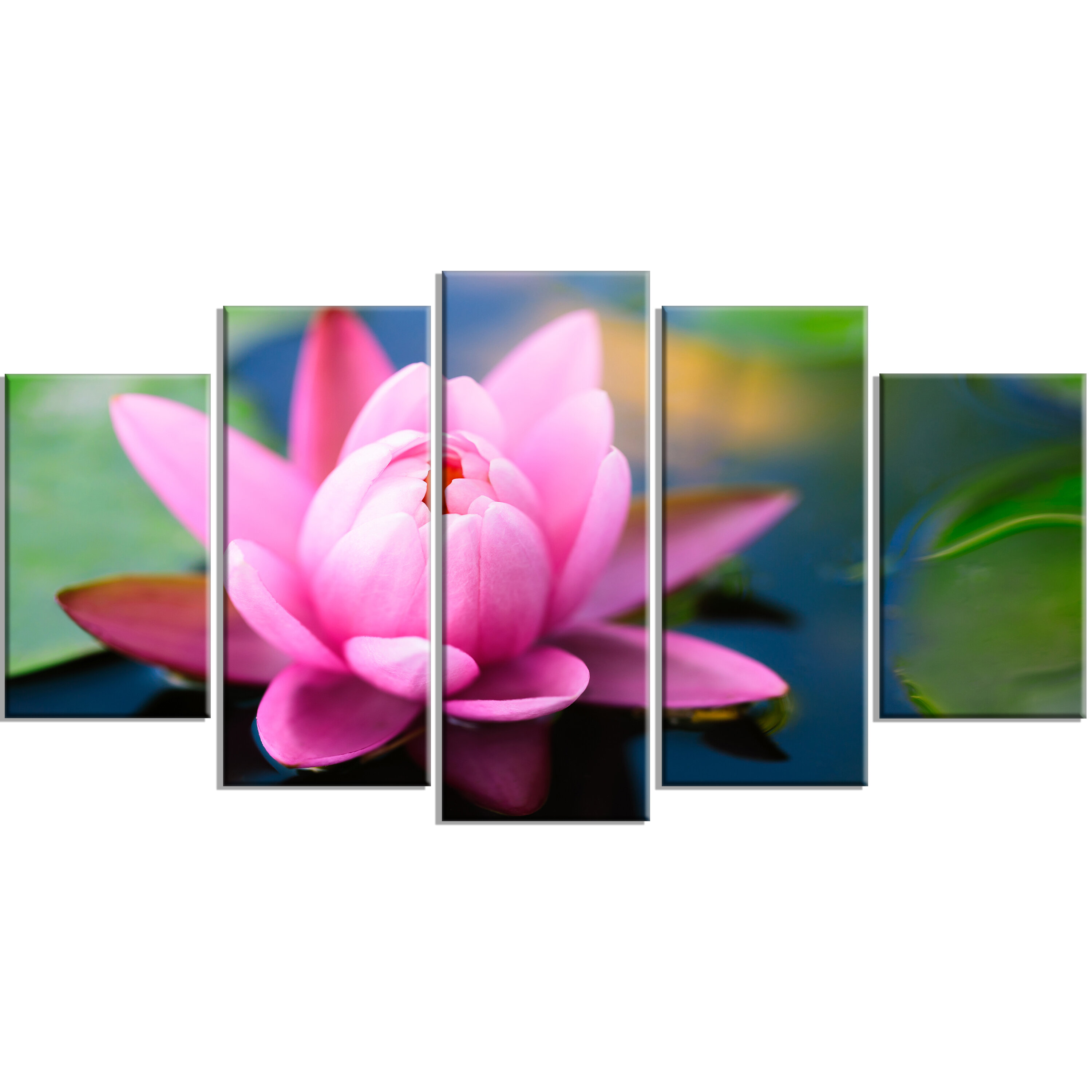 Designart Large Lotus Flower In The Pond 5 Piece Photographic