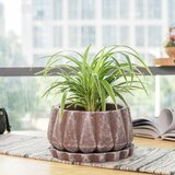 Brown Concrete Planters You Ll Love In 2021 Wayfair