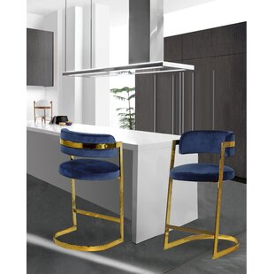Deals Jarrow 26 Bar Stool (Set of 2) by Everly Quinn Reviews (2019) & Buyer's Guide