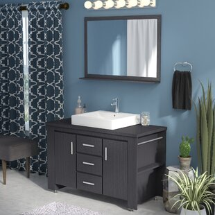 Reviews Blaser 48 Single Bathroom Vanity Set with Mirror By Wade Logan