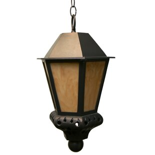 Phillipstown 1-Light Outdoor Hanging Lantern by Alcott Hill Today Sale Only