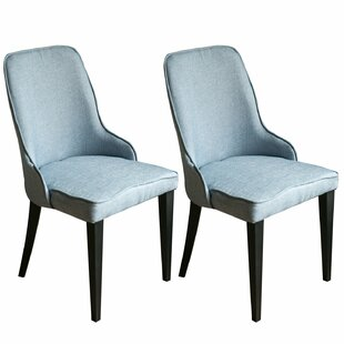 Feitoza Living Room Side Chair (Set of 2) by Latitude Run