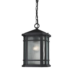 Colyt 1-Light Outdoor Pendant by Charlton Home