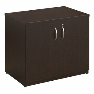 Series C Elite 2 Door Storage Cabinet by Bush Business Furniture Great Reviews