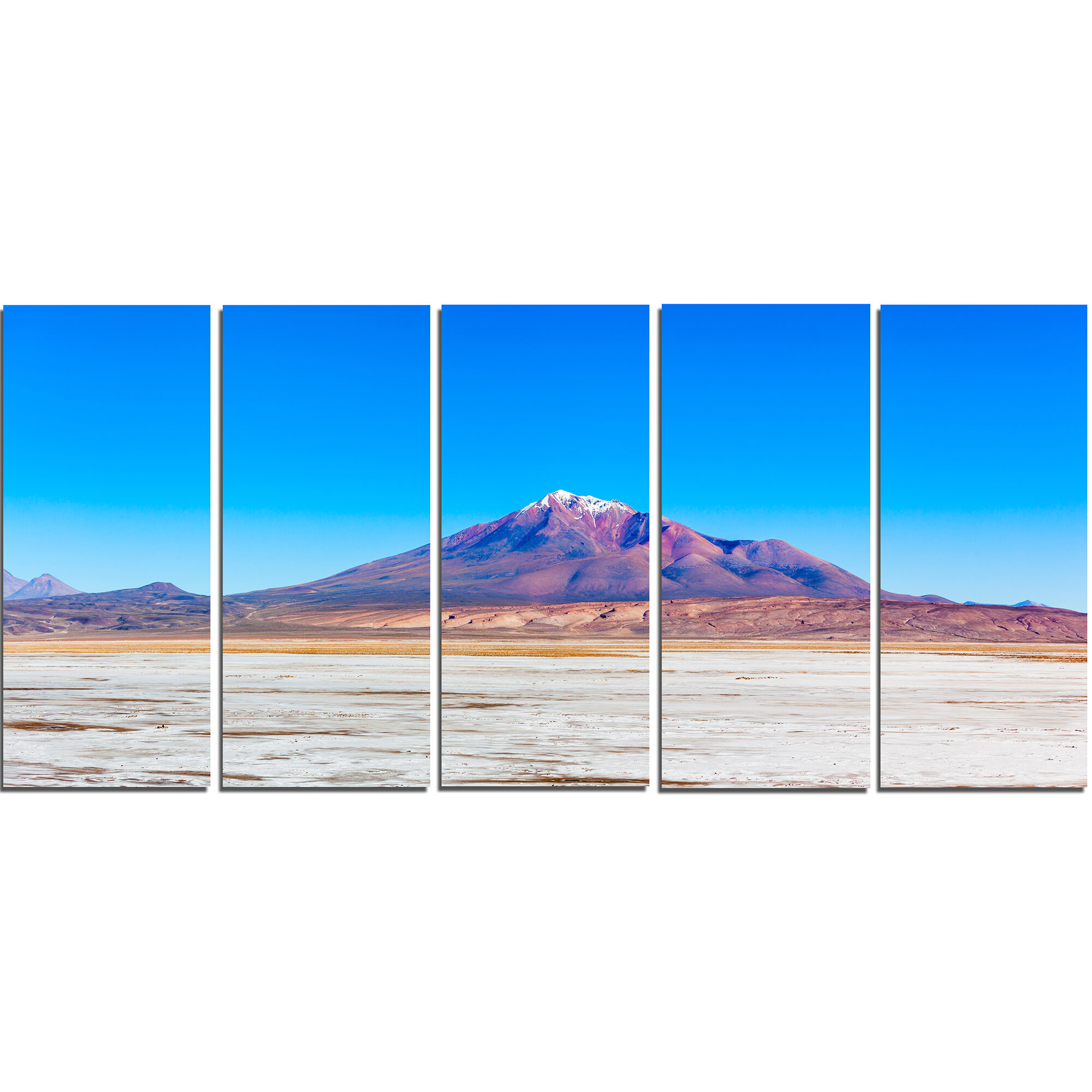 Designart Altiplano Near Uyuni Panorama 5 Piece Wall Art On Wrapped Canvas Set Wayfair